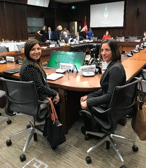 Angela Bonfanti, Vice President, CNIB Foundation (Ontario & Quebec) and Robbi Weldon, Lead, Peer Support & Leisure, CNIB Foundation Ontario East before Standing Committee on Human Resources, Skills and Social Development and the Status of Persons with Disabilities.