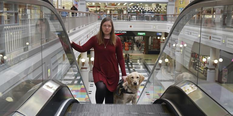 A woman rides up an escalator with her guide dog.